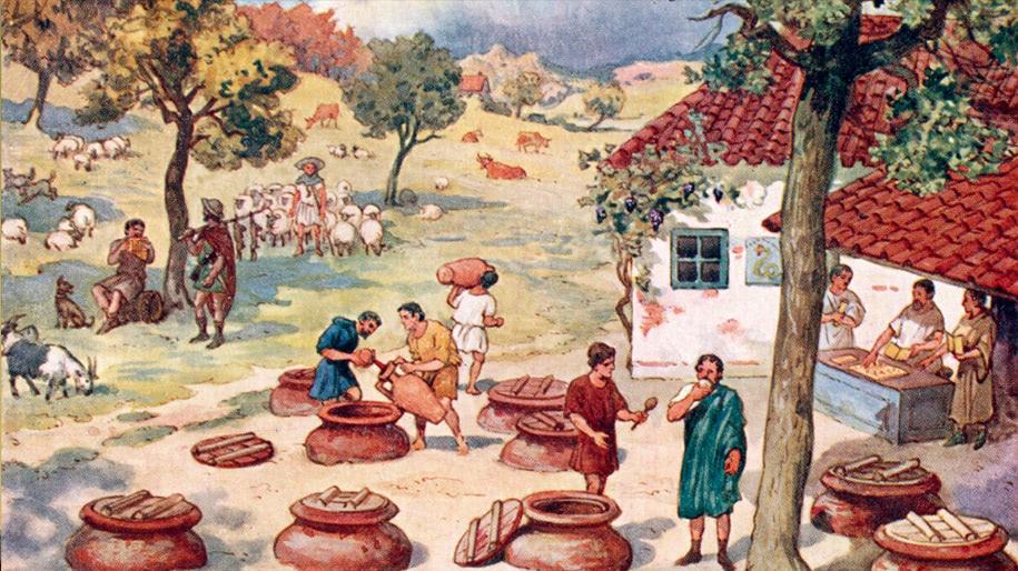 Lịch sử Rượu vang Pháp